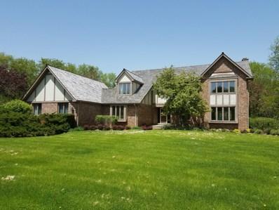 21620 N Stoneybrook Court, Kildeer, IL 60047 - #: 10401909