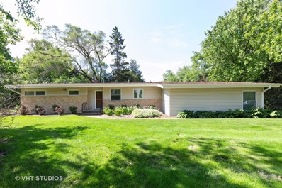 103 Rainbow Drive, Sleepy Hollow, IL 60118 - #: 10401936