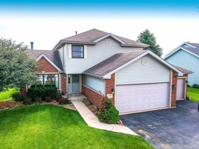 713 Merganser Lane, Peotone, IL 60468 - MLS#: 10402295