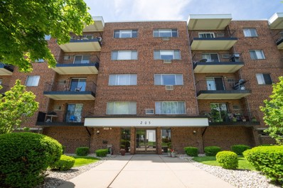 205 W Miner Street UNIT 203, Arlington Heights, IL 60005 - #: 10402340