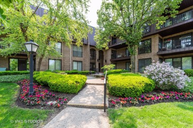 2 The Court Of Harborside UNIT 205, Northbrook, IL 60062 - #: 10402480