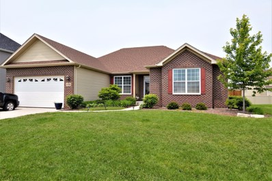1496 S Saddlebrook Lane, Minooka, IL 60447 - #: 10402654