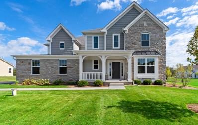 24401 N Blue Aster Lane, Lake Barrington, IL 60010 - #: 10403080