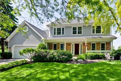 339 Old Wood Court, Vernon Hills, IL 60061 - #: 10403522