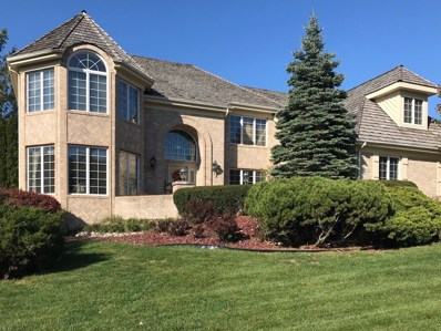 10606 Misty Hill Road, Orland Park, IL 60462 - #: 10403742