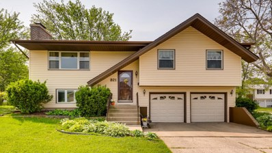 321 W Weathersfield Way, Schaumburg, IL 60193 - #: 10404286