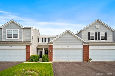 617 Springbrook Trail N UNIT 617, Oswego, IL 60543 - #: 10404454