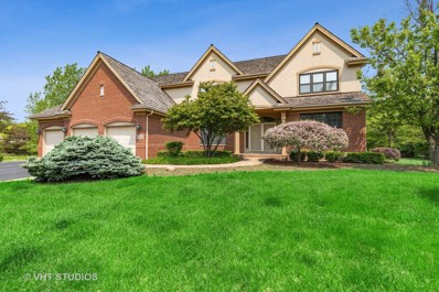 14120 W Rodmell Court, Green Oaks, IL 60048 - #: 10404508