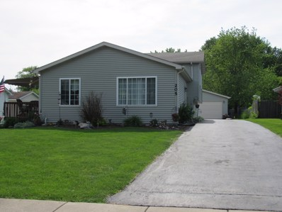 205 N Matteson Street, Elwood, IL 60421 - #: 10404526