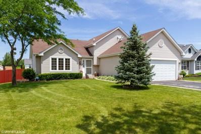 4784 W Marigold Lane, Monee, IL 60449 - #: 10404839