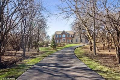 23170 Wienecke Court, Lake Barrington, IL 60010 - #: 10406293