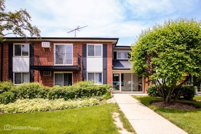 1118 N Dale Avenue UNIT 2F, Arlington Heights, IL 60004 - #: 10406561