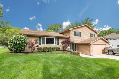 121 George Lane, Naperville, IL 60540 - #: 10407402