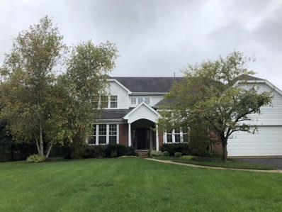 29070 Old Rockland Road, Green Oaks, IL 60048 - #: 10407407