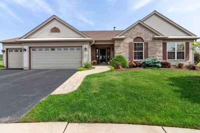 12560 Green Meadow Court, Huntley, IL 60142 - #: 10408329