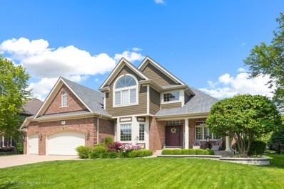 3520 Vanilla Grass Drive, Naperville, IL 60564 - #: 10408409