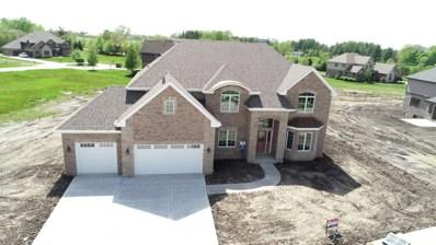 8674 Stone Creek Boulevard, Frankfort, IL 60423 - #: 10408608