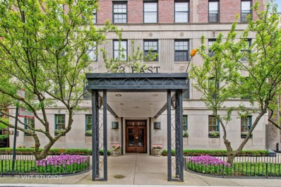 73 E Elm Street UNIT 5C, Chicago, IL 60611 - #: 10408824