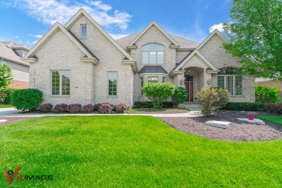 10905 White Deer Circle, Orland Park, IL 60467 - #: 10408849