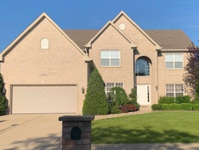 25903 Meadowland Circle, Plainfield, IL 60585 - #: 10409124