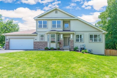 26110 W Timber Ridge Drive, Channahon, IL 60410 - #: 10409476