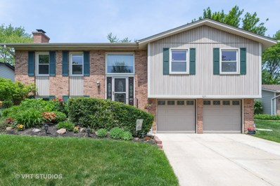 325 Red Bud Place, Buffalo Grove, IL 60089 - #: 10409546