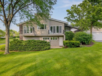 132 Briarwood Avenue, Oak Brook, IL 60523 - #: 10409569