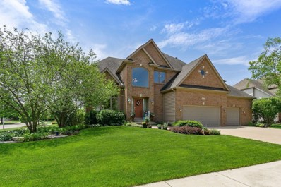 2624 Lupine Circle N, Naperville, IL 60564 - #: 10409616