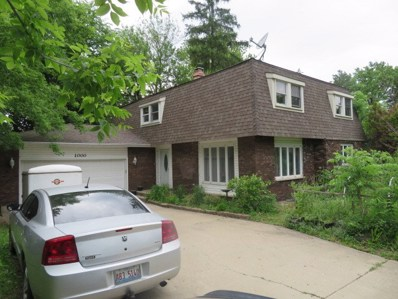 1000 American Way, East Dundee, IL 60118 - #: 10410001