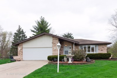 10S225  Kaye, Willowbrook, IL 60527 - #: 10410126