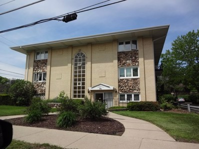 2 N Dee Road UNIT 206, Park Ridge, IL 60068 - #: 10410389