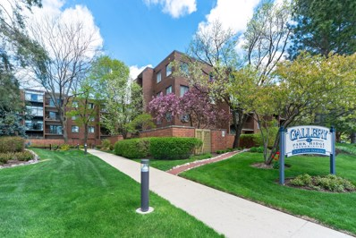2200 Bouterse Street UNIT 408, Park Ridge, IL 60068 - #: 10410589