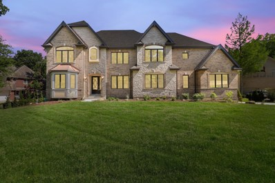 132 Ashton Drive, Burr Ridge, IL 60527 - #: 10411320