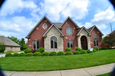 9042 Big Sable, Frankfort, IL 60423 - #: 10411764