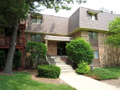 1960 Selmarten Road UNIT 3809, Aurora, IL 60505 - #: 10411835