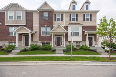 1175 Evergreen Avenue UNIT 18-4, Des Plaines, IL 60016 - #: 10412087