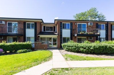 2431 E Brandenberry Court UNIT 1R, Arlington Heights, IL 60004 - #: 10412138