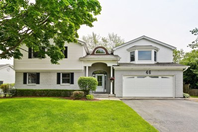 46 Timber Hill Road, Buffalo Grove, IL 60089 - #: 10412348