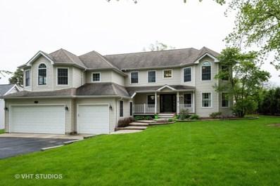 481 W Daniels Road, Palatine, IL 60067 - #: 10413845
