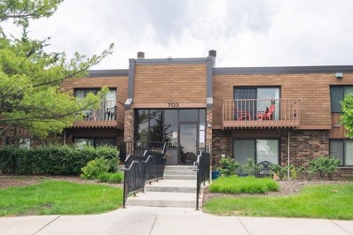 703 Waterford Road S UNIT 1B, Schaumburg, IL 60193 - #: 10414951