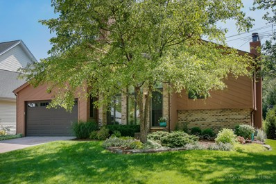 115 White Oak Drive, Wheaton, IL 60187 - #: 10415459