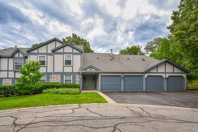 1569 Sandhurst Court UNIT B, Wheaton, IL 60189 - #: 10416162