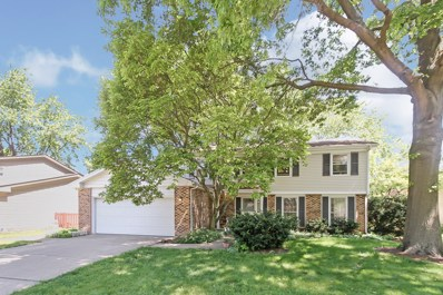 6710 Breckenridge Road, Lisle, IL 60532 - #: 10416254