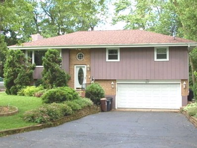 1017 Maple Street, Lake In The Hills, IL 60156 - #: 10416405
