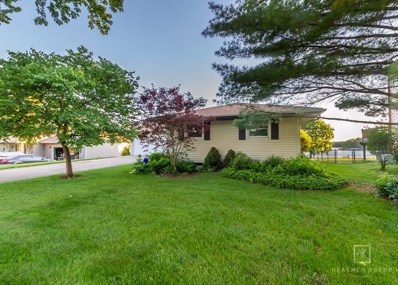 1334 Mabel Lane, Lake Holiday, IL 60548 - #: 10417725