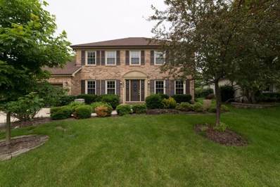 1809 Slippery Rock Court, Naperville, IL 60565 - #: 10417855