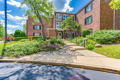 520 Biesterfield Road UNIT 314, Elk Grove Village, IL 60007 - #: 10418086