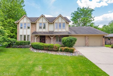 24 Stirrup Cup Court, St. Charles, IL 60174 - #: 10418195