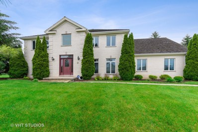 1 Middletree Lane, Hawthorn Woods, IL 60047 - #: 10418379
