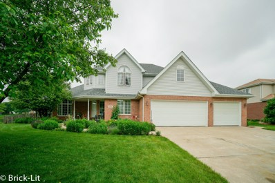 1185 Sierra Ridge, New Lenox, IL 60451 - #: 10419464